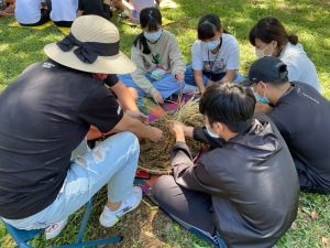 體驗傳統農事課程-搓小米